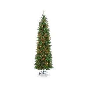 Lit Christmas Tree   Kingswood Fir Hinged Pencil   Tree Shop