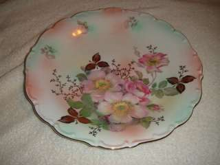 Schumann Arzberg Germany Bavaria Rose Plate Colorful Rose Painting