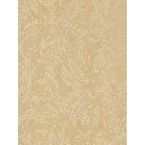 Wallpaper Patton Wallcovering Focal Point 7993177 Home Improvement