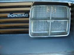 1975 PONTIAC TRANS AM FIREBIRD FRONT GRILLE SET VERY NICE LH RH