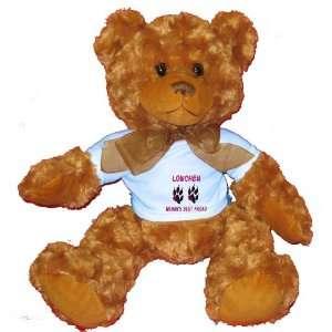 LOWCHEN WOMANS BEST FRIEND Plush Teddy Bear with BLUE T