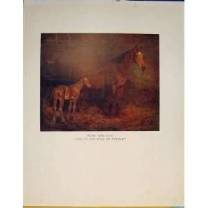 Color Mare Foal Sketch Drawing Fine Art Old Print C1936