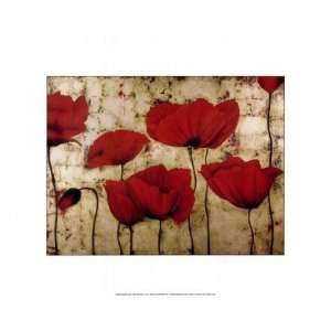Poppies II by Dana del Castillo 14x11: Home & Kitchen