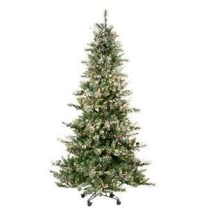 Needle Virginia Pine Christmas Tree   Clear Lights