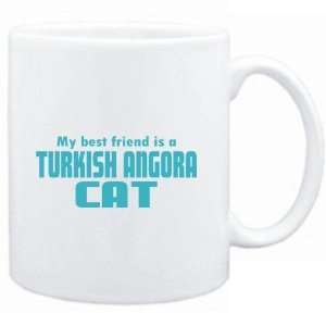 BEST FRIEND IS a Turkish Angora  Cats