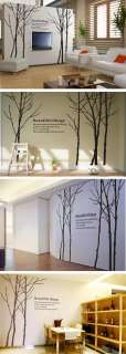 Large Beautiful thing trees Forest Elegant Wall Decor Decal Sticker