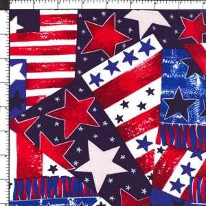 American Flag Patriot Pride Parade Cotton Fabric BTY