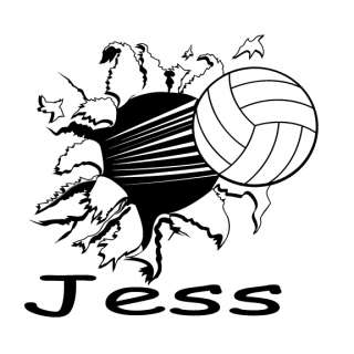 Personalized Flying Volleyball Vinyl Wall Art Decal