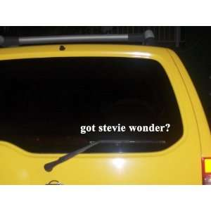got stevie wonder? Funny decal sticker Brand New