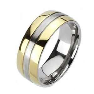 High Polished Titanium Ring With Gold Plated Edges and Brushed Center
