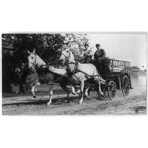 Ladder truck,fire department,horse drawn wagon,equipment,Columbus,Ohio