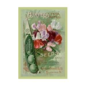 Burpees Farm Annual The Best Seeds That Grow 20x30 poster