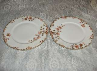 Antique Haviland Limoges China Plates H&C Floral