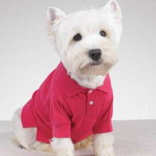 Casual Canine Preppy Puppy Polo Shirt Red Small
