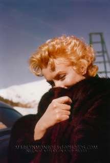 MARILYN MONROE RED HAIR & BROWN FUR 3xRARE8x10 PHOTOS
